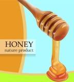 Vector que vierte el ejemplo de Honey From Wooden Stick Realistic Tarjeta, cartel, tienda, plantilla del anuncio Imagen de archivo libre de regalías