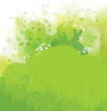 Vector rabbits in grass, spring nature background. Stock Images