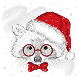 Vector raccoon . Cute raccoon vector . Raccoon painted by hand. Raccoon in a Christmas hat and glasses. Winter postcard. Print . W Stock Image
