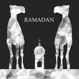 Vector Ramadan greeting with camel, Islamic greeting card for Ra Royalty Free Stock Photos
