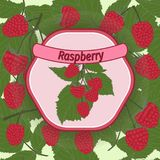 Vector raspberry label Stock Photography