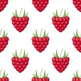 Vector raspberry seamless pattern on white. Background design for sweets and pastries filled with raspberry, dessert menu, health stock illustration