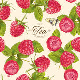 Vector raspberry tea pattern Royalty Free Stock Images