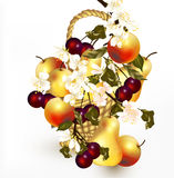 Beautiful design with realistic vector fruits in basket with  br Stock Image