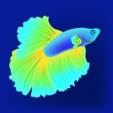 Vector realistic fish on the dark blue beckgound, element for design works. Vector realistic blue and yellow fish on the dark blue beckgound, element for design Royalty Free Stock Photos
