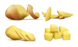 Vector clipart with raw peeled potato and slices royalty free illustration