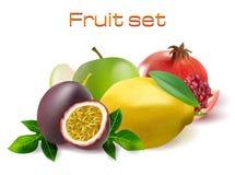 Vector realistic 3d fruit set. Passionfruit, pomegranate, lemon apple  Stock Image