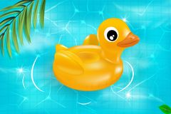 Vector realistic 3d pink flamingo and yellow rubber duck swimming circle.  Vector seamless texture. Vector seamless texture. Seamless pattern with summer pool Royalty Free Stock Image