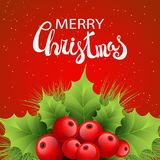 Vector realistic holly and fir tree branches. Christmas ornament. Holly green leaves and red berries on red background with snowflakes. Merry Christmas Royalty Free Stock Images