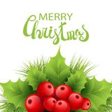Vector realistic holly and fir tree branches. Christmas ornament. Holly green leaves and red berries on white background. Merry Christmas calligraphy text. Card Stock Photography