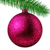 Realistic rose Christmas ball or bauble with glitter sparkles and fir branch isolated on white background. Vector illustration. Vector realistic illustration Stock Photography