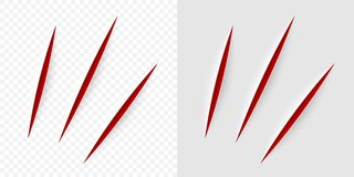 Vector Realistic Red Cut With A Office Knife Stock Photos