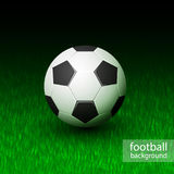 Vector realistic soccer ball on field grass Stock Photo
