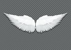 Vector realistic white angel wings on transparent vector illustration