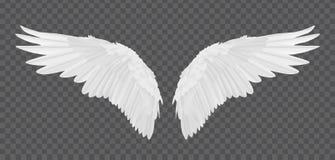 Vector realistische die engelenvleugels op transparante achtergrond worden geïsoleerd vector illustratie