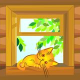Vector Red cat lying on the windowsill Royalty Free Stock Photos