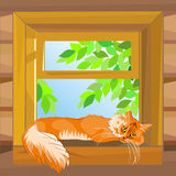 Vector Red cat lying on the windowsill. Red fluffy tabby cat on a summer day lying on a windowsill at the open window wooden farmhouse Royalty Free Stock Photography