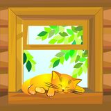 Vector Red cat sleeping on the windowsill Stock Photography