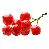 Vector red currant isolated Stock Image