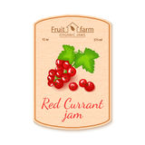 Vector red currant jam lable. Composition of ripe fruits. Design of a sticker for a jar with red currant jam, fruit Royalty Free Stock Images