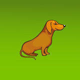 Vector red dog. On green background Royalty Free Stock Photo