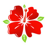 Vector red Flower Royalty Free Stock Images