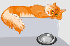 Vector Red fluffy tabby cat with yellow eyes. Red fluffy tabby cat with yellow eyes lying on the couch in front of a bowl Stock Photography