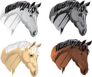 Vector red heads, nightingales, crows, white horses. Vector horses of different suits Royalty Free Stock Image