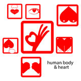 Vector red icon human body and heart, love concept Stock Image