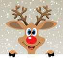 Vector red nosed reindeer holding blank paper Royalty Free Stock Images
