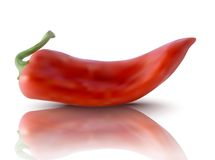 Vector red pepper Royalty Free Stock Photos