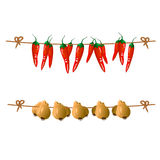Vector. Red peppers and onions hanging on a rope Royalty Free Stock Photos