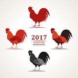 Vector red rooster, symbol of 2017. The emblem the New Year according to the Chinese calendar. Vector red rooster, the symbol of 2017. The emblem of the New Year Stock Images