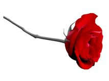 Vector red rose Stock Photography