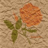 Vector red rose, creased paper Royalty Free Stock Images