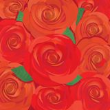 Vector red rose flower background. Royalty Free Stock Photo