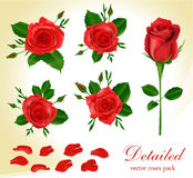 Vector red roses Royalty Free Stock Photography