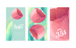 Vector red tulip flower set of color vertical backgrounds Stock Photos