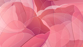 Vector red tulip flowers color background Stock Image