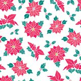 Vector red on white poinsettia flower and holly berry holiday seamless pattern background. Great for winter themed Royalty Free Stock Images