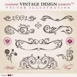 Vector reeks. Het kalligrafische ornament van ontwerpelementen Royalty-vrije Stock Afbeeldingen