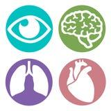 Vector reeks medische pictogrammen Royalty-vrije Stock Afbeelding