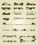 Vector reeks uitstekende ontwerpelementen met bloemen Stock Afbeelding