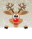 vector a rena cheirada vermelha que prende o papel em branco Imagens de Stock Royalty Free