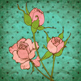 Vector retro background with pink roses. Retro vector background with flowers on dotted backgriund, eps10 Stock Image