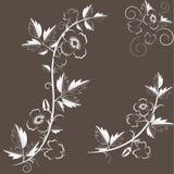 Vector retro bloemenachtergrond met bloemen royalty-vrije illustratie