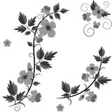 Vector retro floral background with flowers Royalty Free Stock Images
