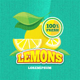 Vector retro poster with juicy fresh lemon, lemonade vintage background Stock Image