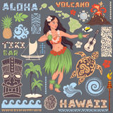 Vector Retro reeks Hawaiiaanse pictogrammen en symbolen Stock Foto's