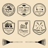 Vector retro reeks landbouwbedrijf verse logotypes Uitstekende etiketten met hand geschetste landbouwmachineillustraties Royalty-vrije Stock Afbeelding